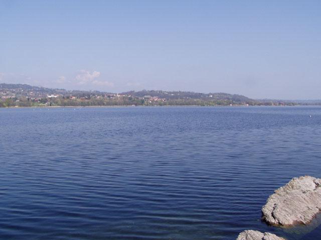 Un giro intorno al lago di varese for Grosso pesce di lago